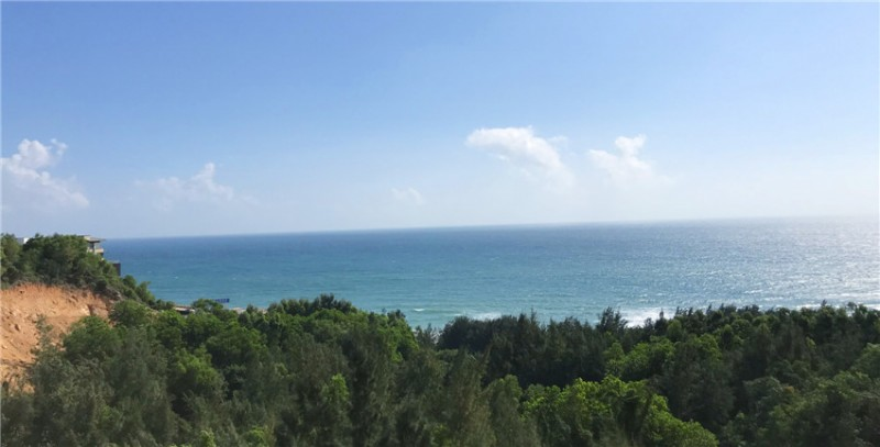 T区看海实景图1: